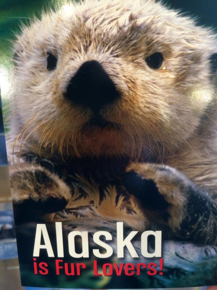 Alaska-608