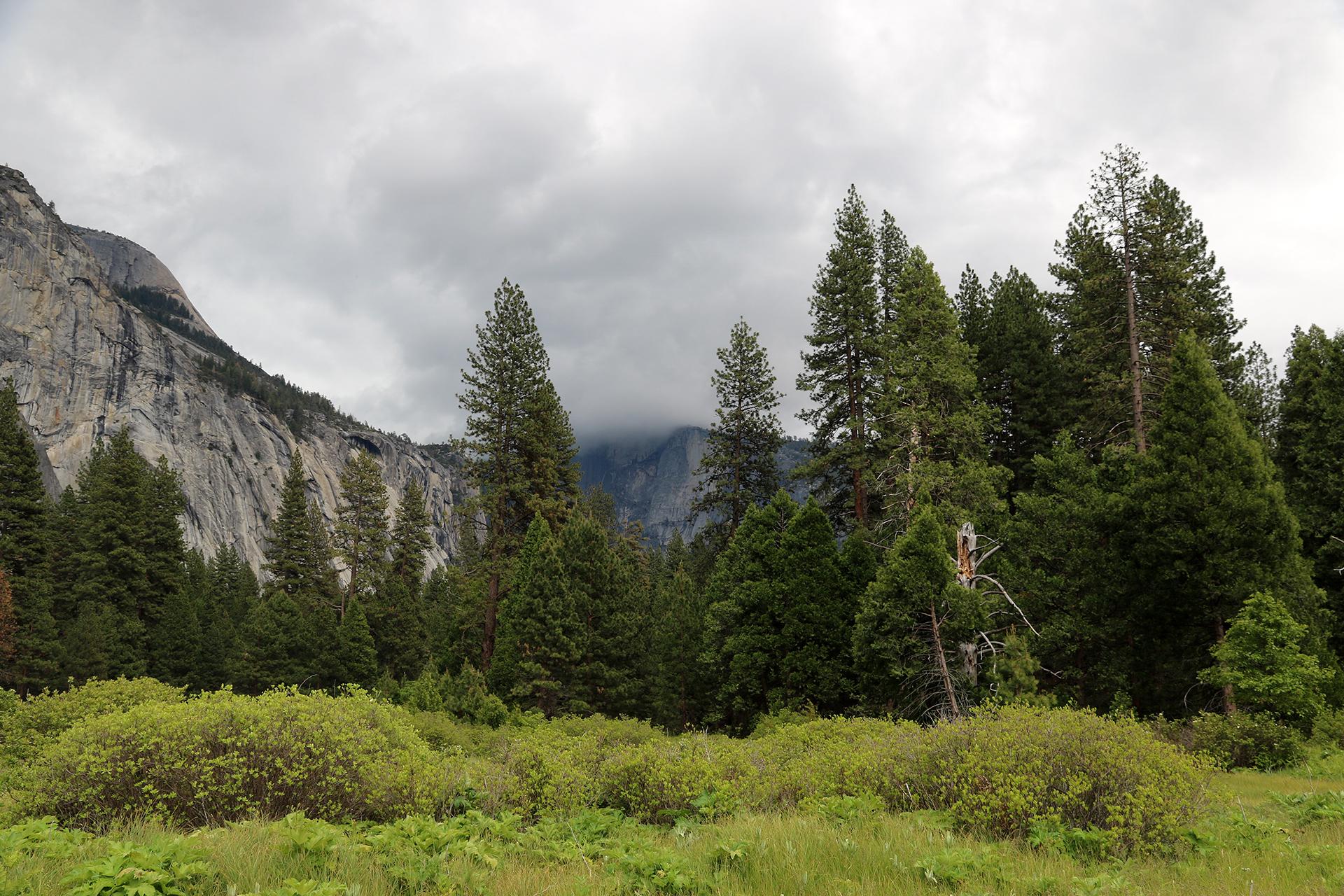 California2016-168
