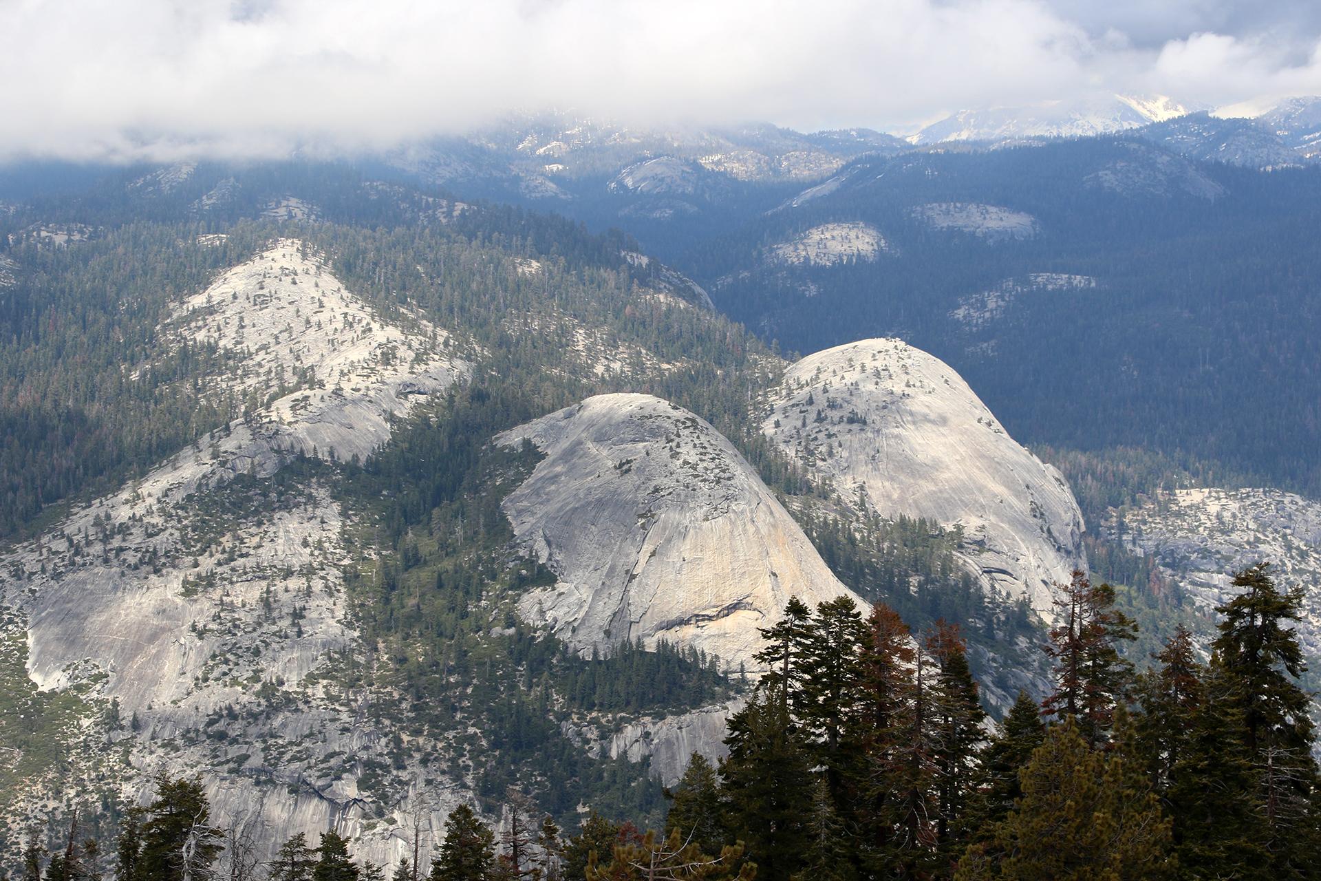 California2016-345