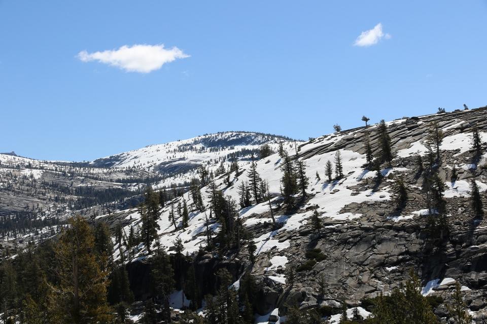 California2016-583