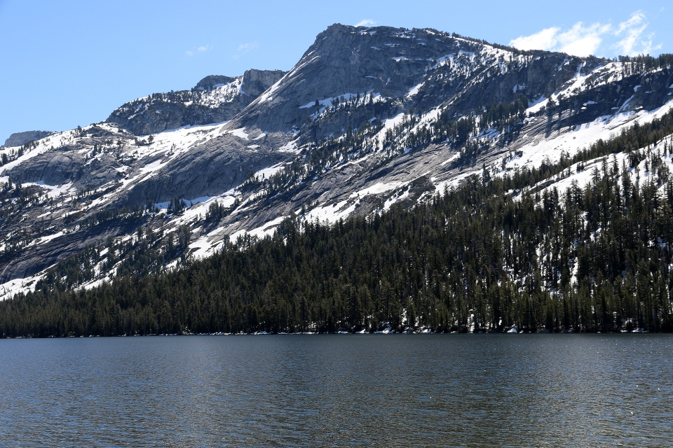 California2016-594