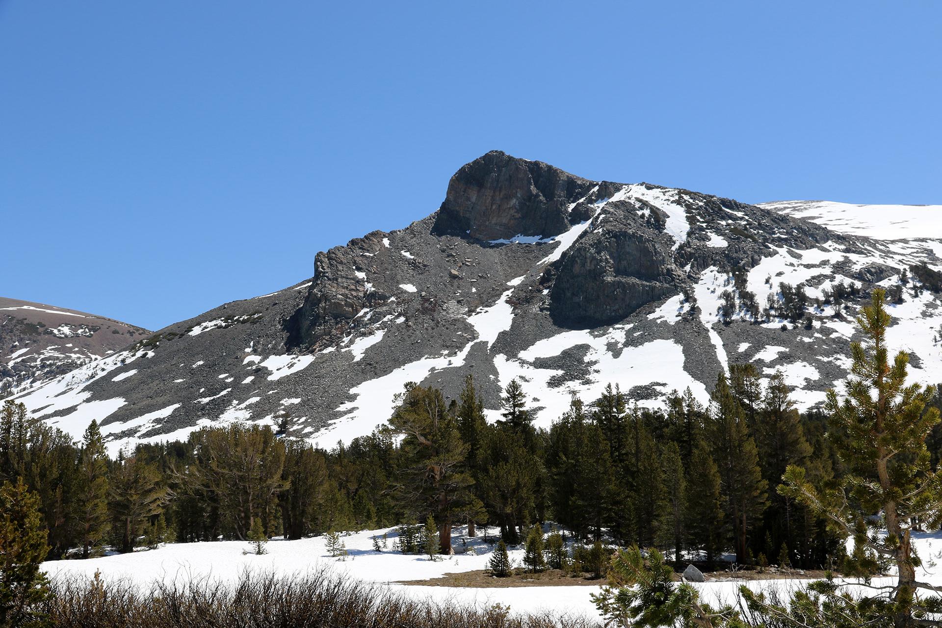 California2016-598