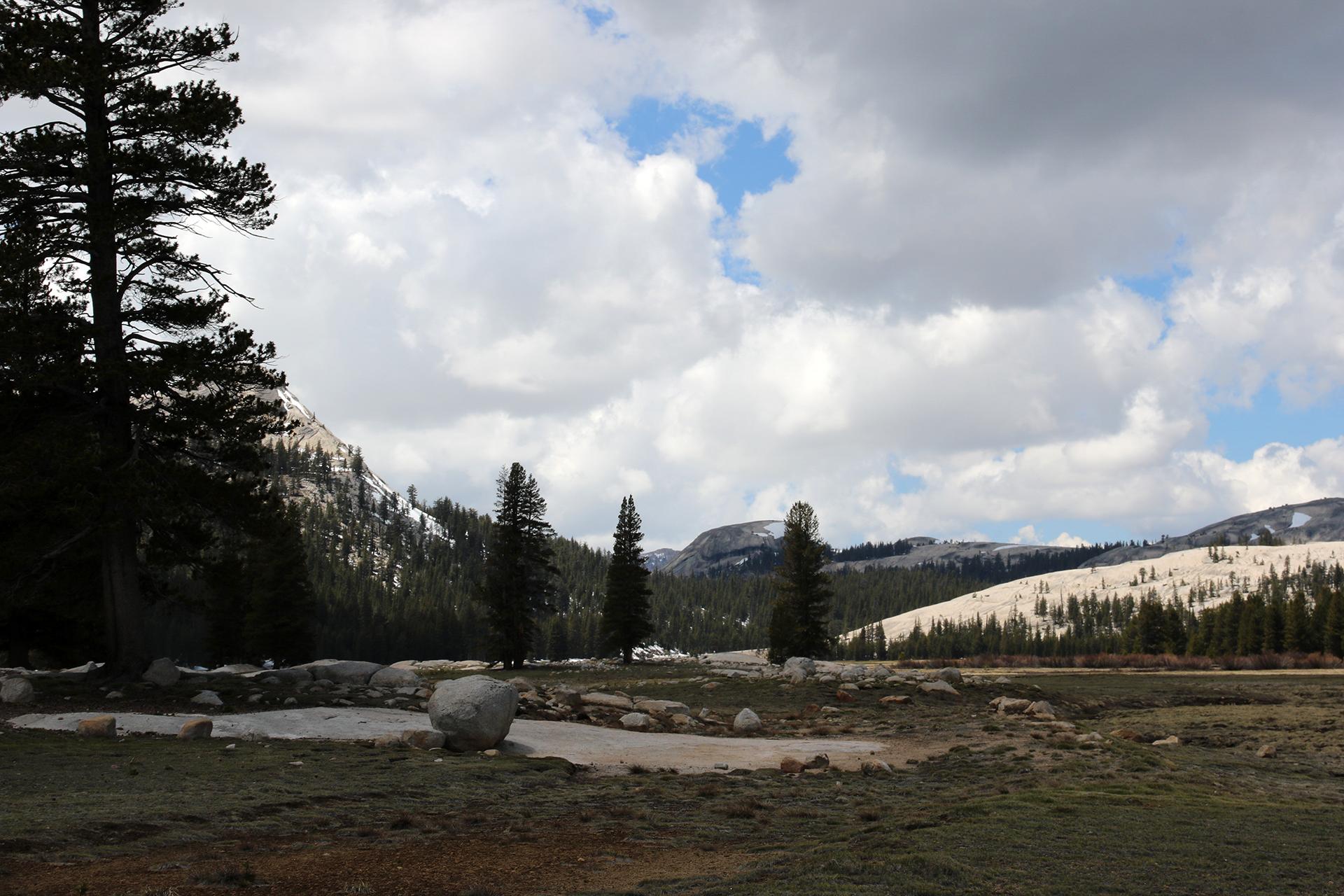 California2016-632