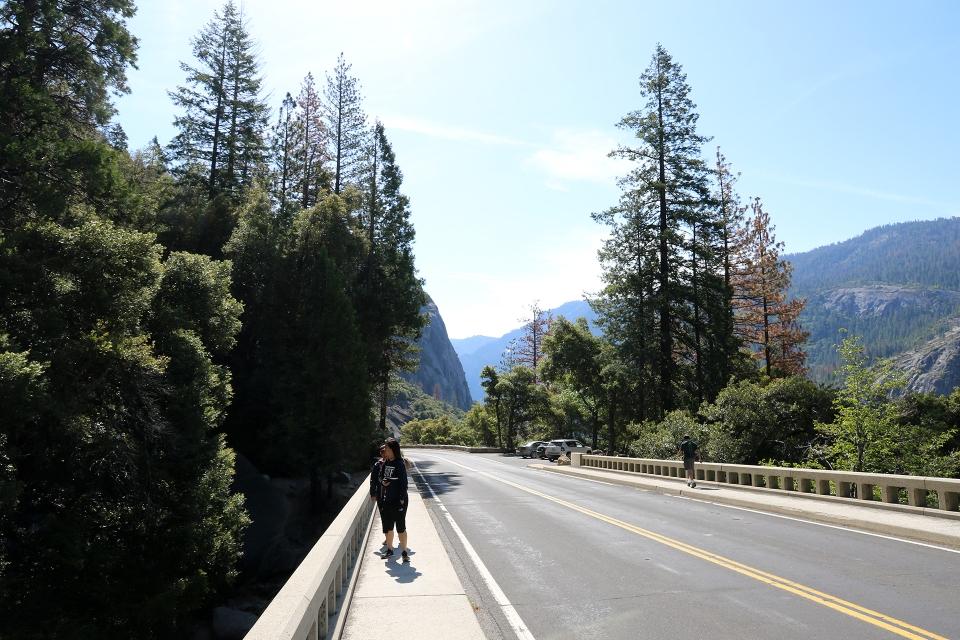California2016-769