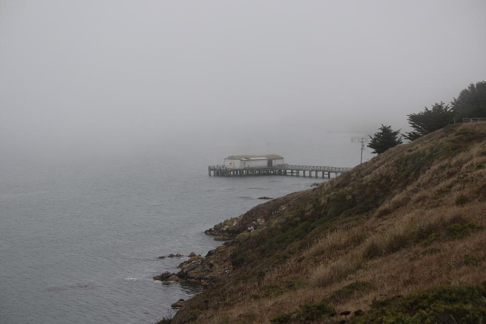 California2016-2-174
