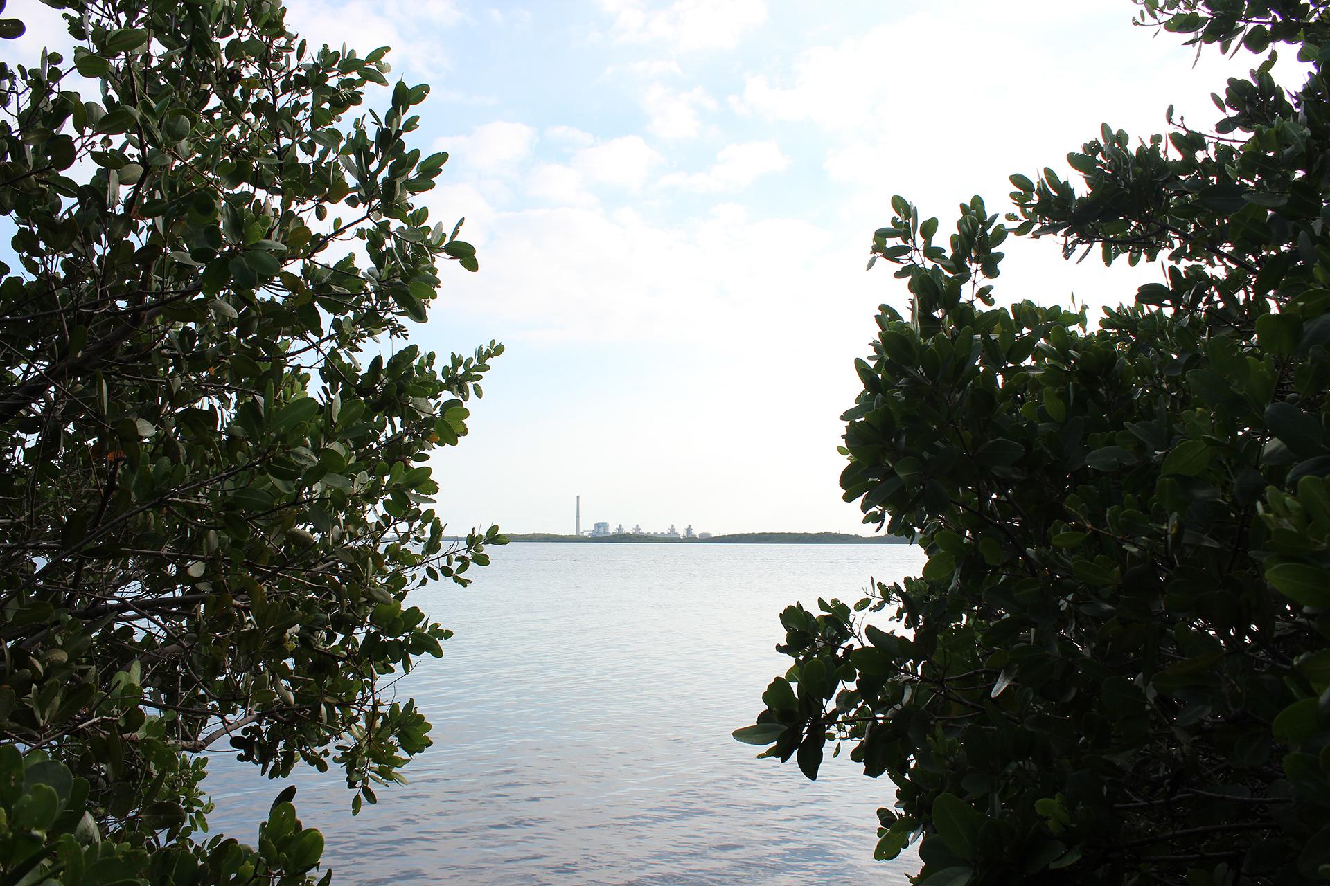 FloridaKeys-698