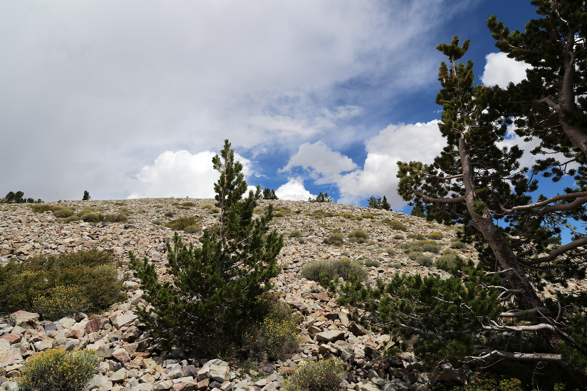 GreatBasin-339