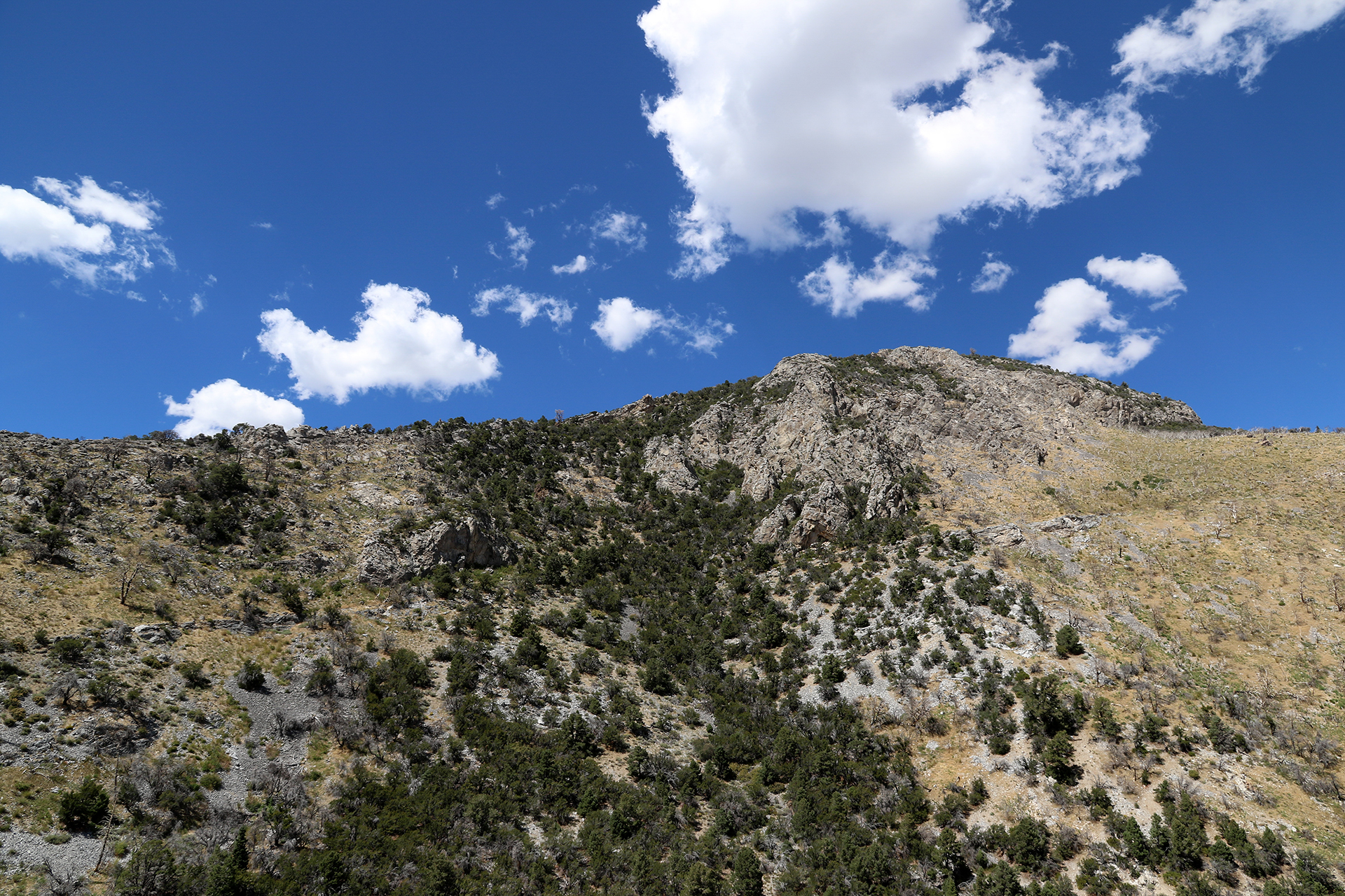 GreatBasin-479
