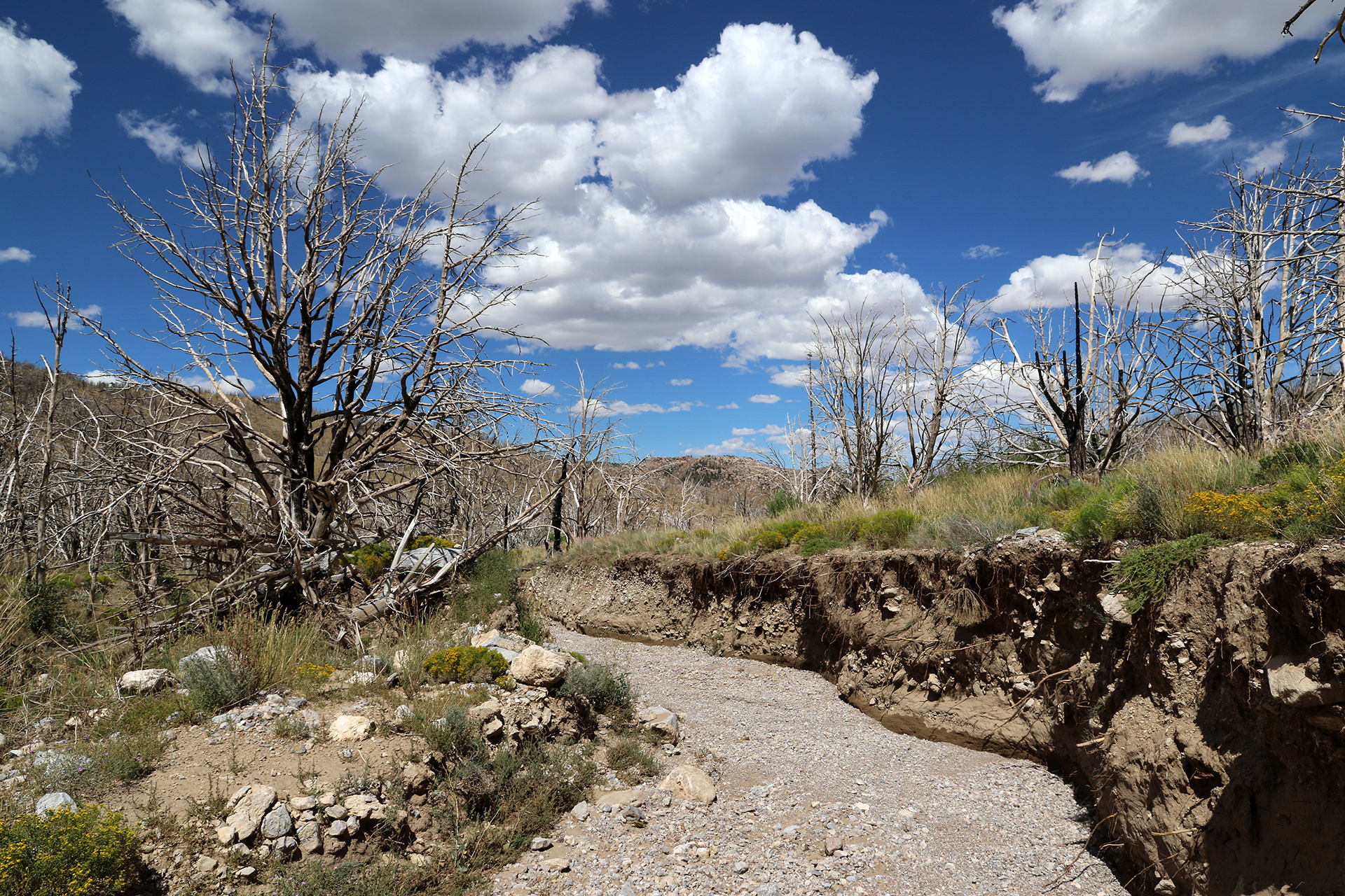 GreatBasin-506