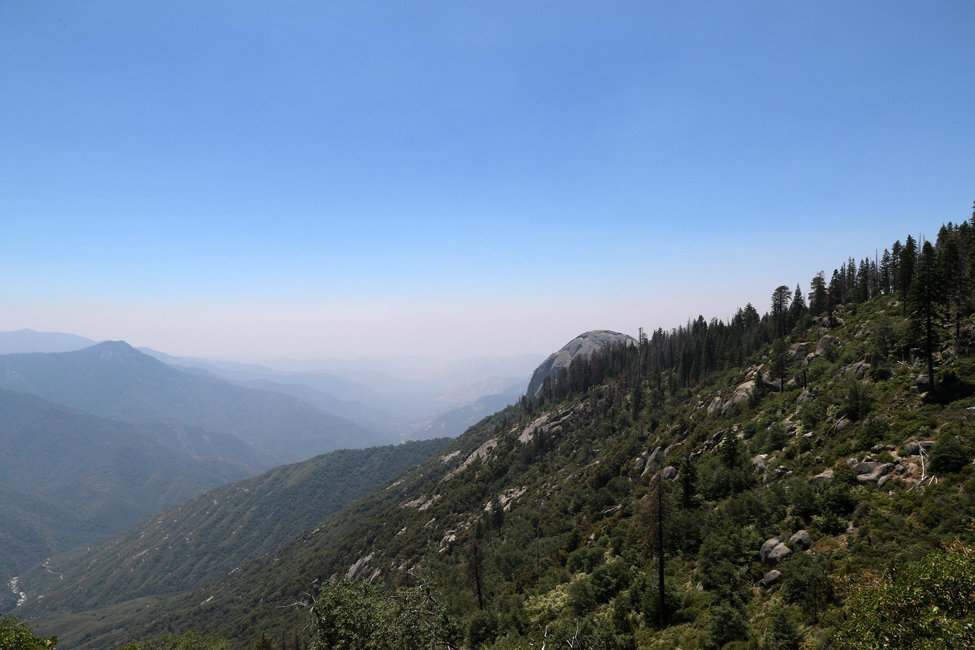 California2018-294
