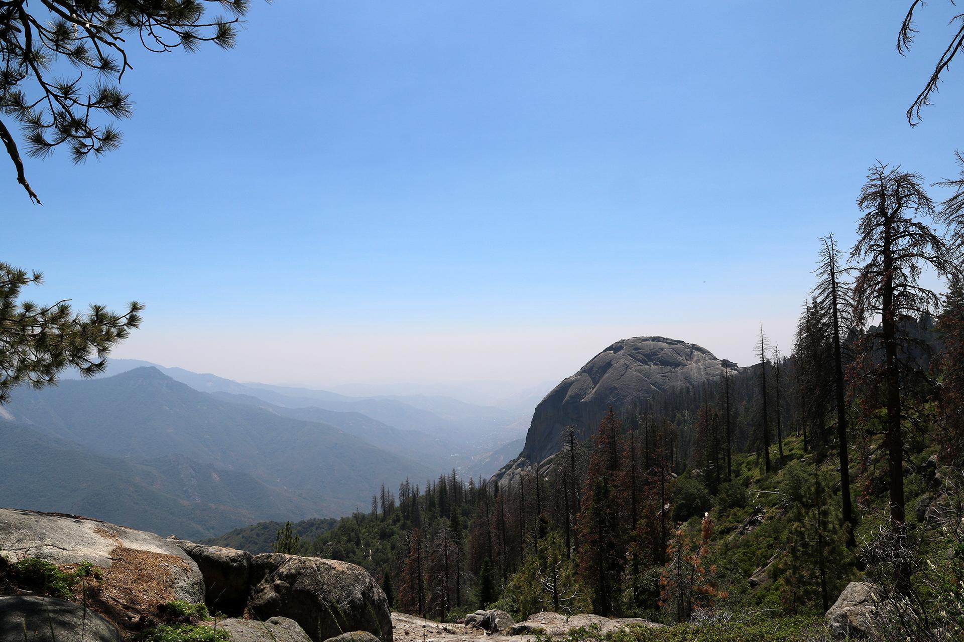 California2018-331