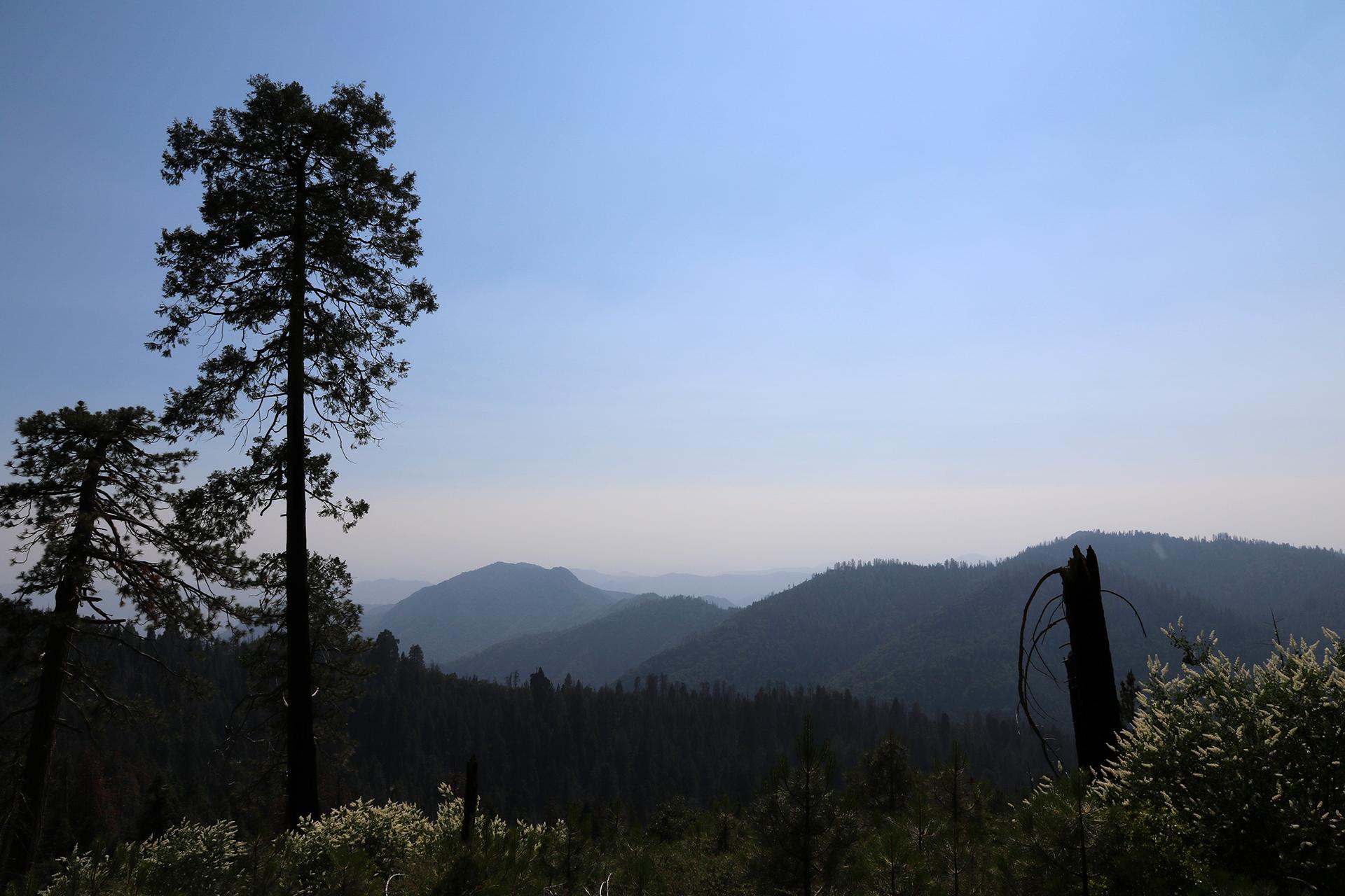 California2018-426