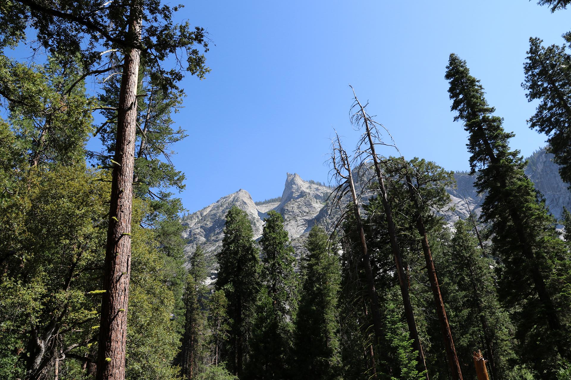 California2018-617