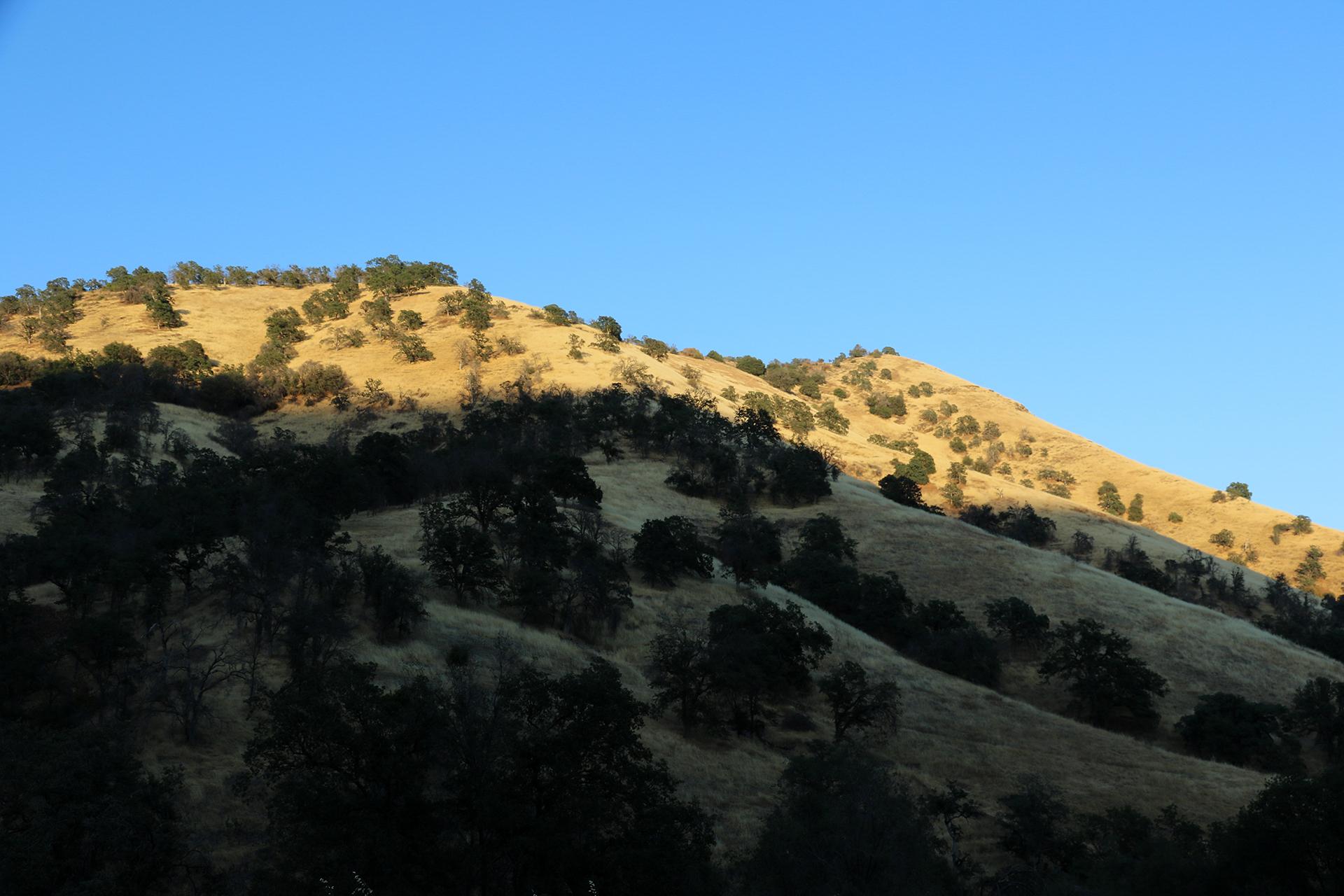 California2018-654