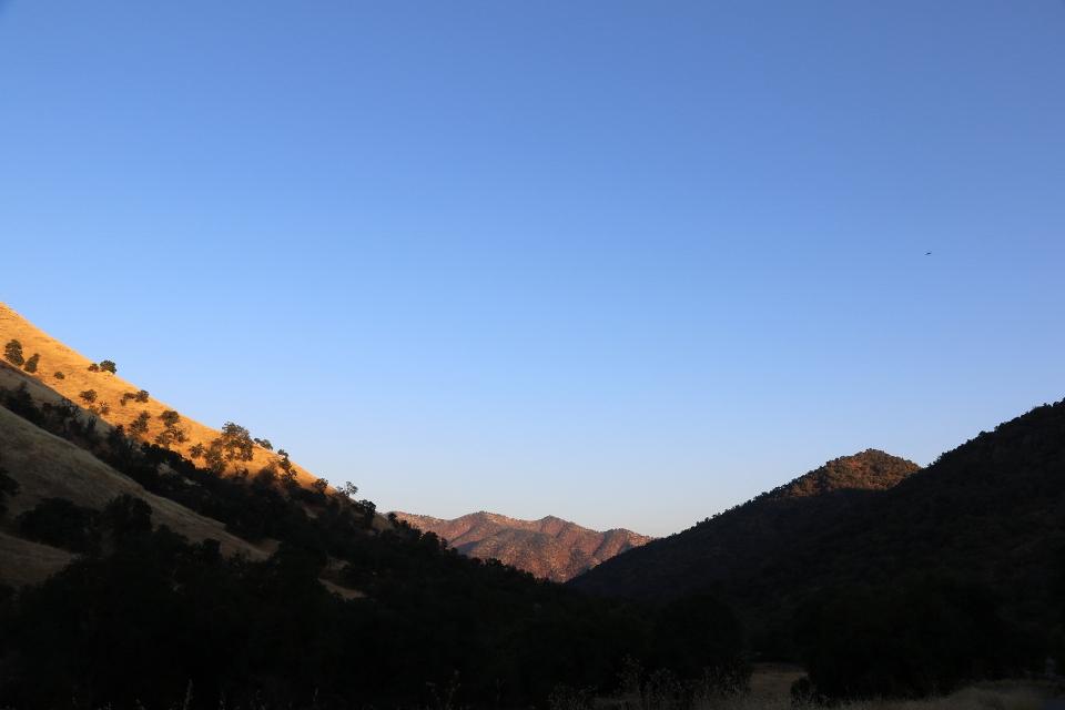California2018-655